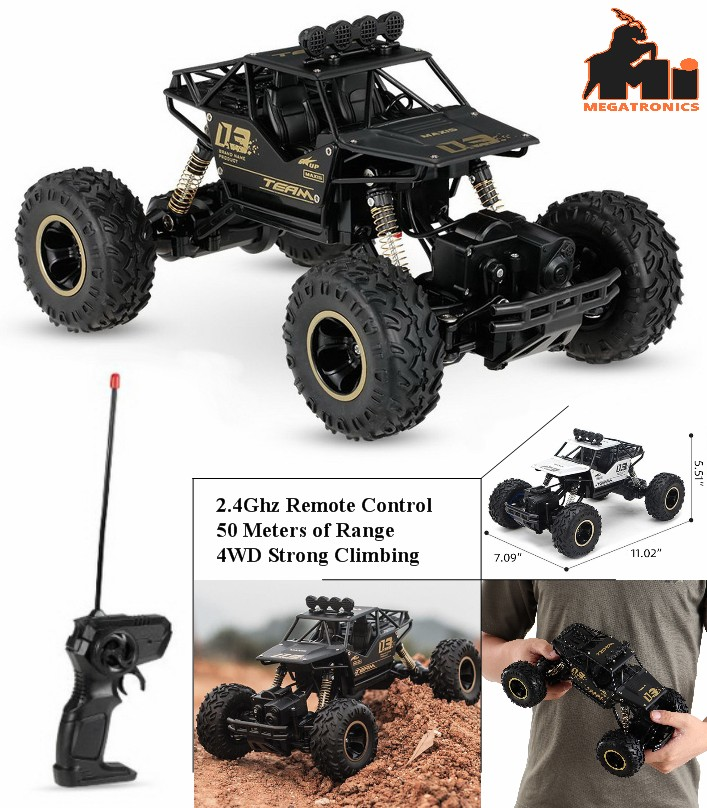 Team Maxis 03 rechargeable RC Car buggy black 2.4g